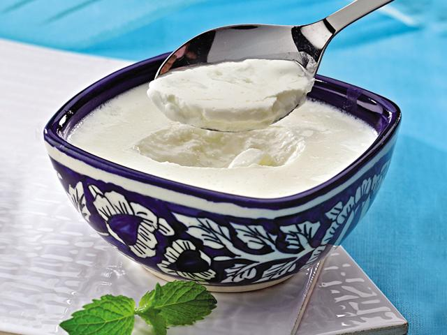 yogurt in hindi